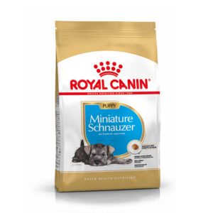 Royal Canin Breed Health Nutrition Mini Schnauzer Puppy