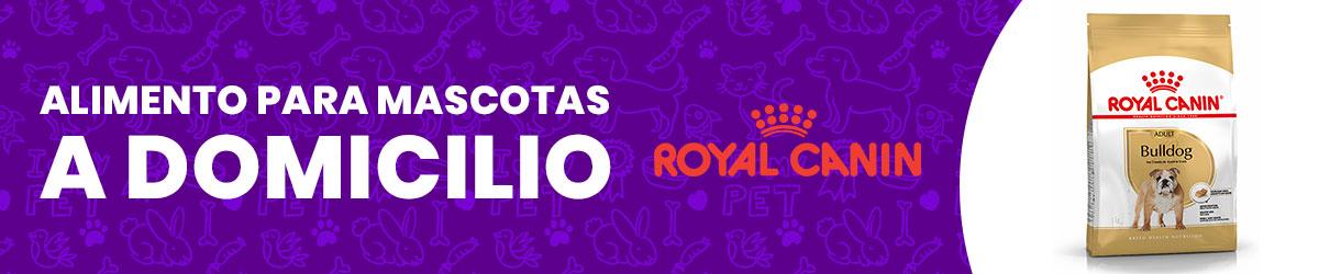 Comida para perros y gatos Royal Canin