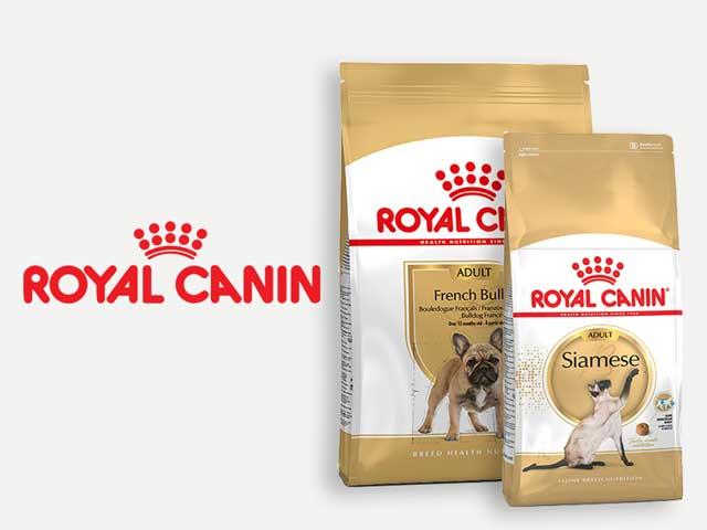 comida para perro y gato royal canin