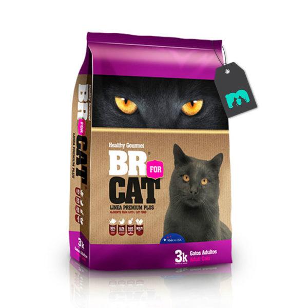 BR for cat gato adulto