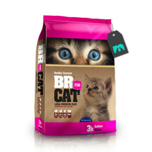 BR for cats gatitos