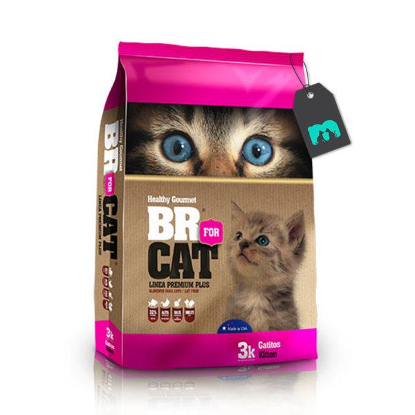BR for cats gatitos