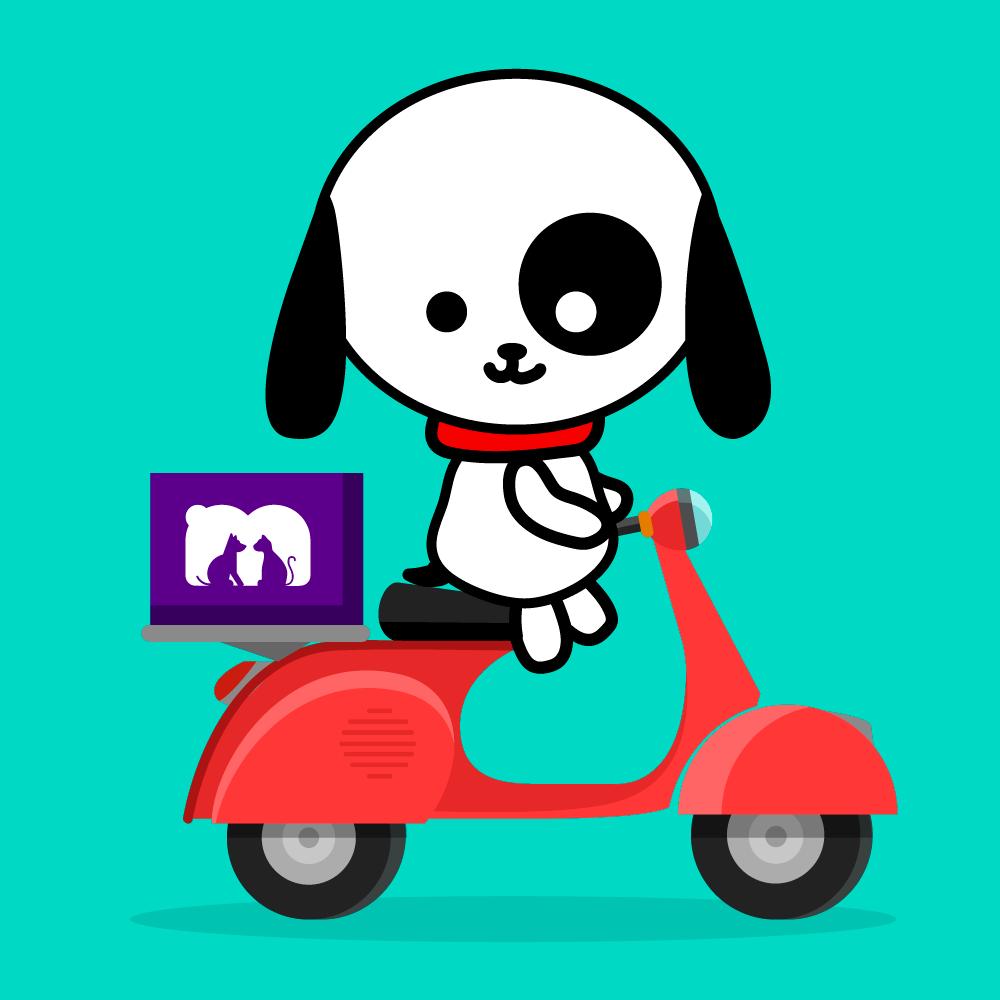 Recomendaciones pedidos Mascota Market
